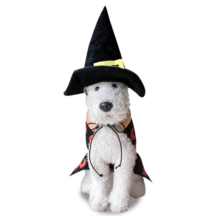 Dog Halloween Costume Dog Witch Hat Resting Witch Face Dog Costume Dog Halloween Dress Dog Witch Costume