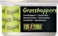 Exo Terra Canned XL Grasshoppers Reptile Herp Food