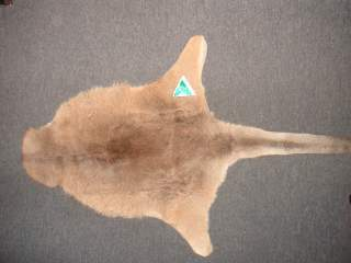Kangaroo Skin Rug Medium