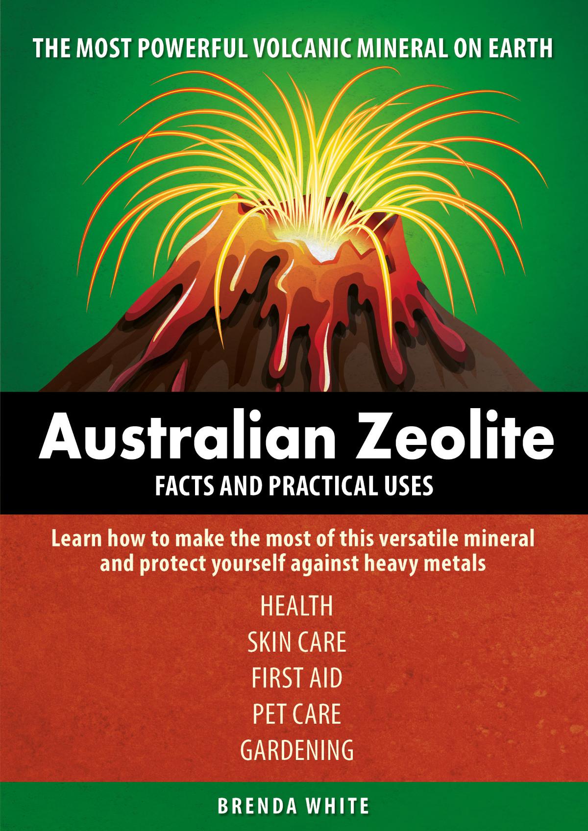 Zeolite Book