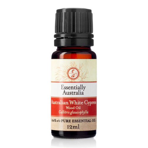 Australian White Cypress (wood oil) 12ml