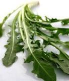 Dandelion Herb Cut 1kg