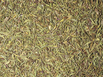 Thyme Leaf 1kg - - WAS $19.50 - 20% off