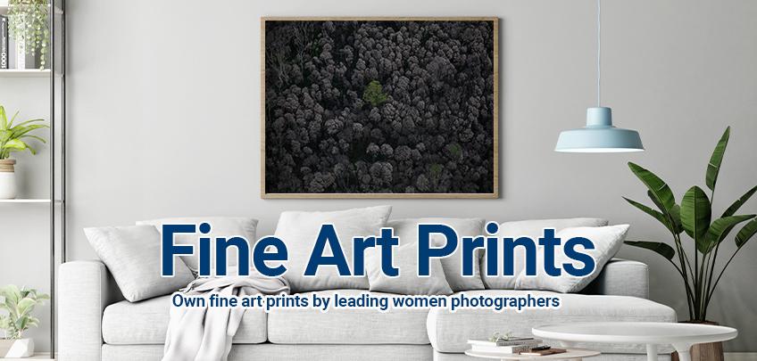 Fine Artworks for Sale