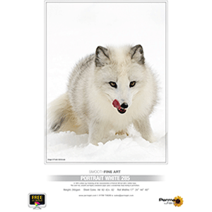 PermaJet A4 Portrait White 285gsm - 25 Sheets