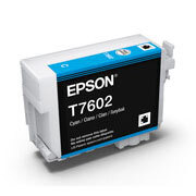 Epson UltraChrome HD Ink Cyan for SC-P600