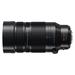 Panasonic Leica DG 100-400mm f/4-6.3 ASPH Power OIS Lens