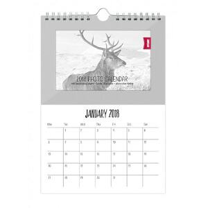 Shot2Go 2017 Hanging Photo Calendar