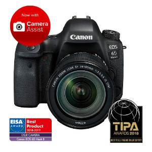 Canon EOS 6D Mark II DSLR + 24-105mm f/3.5-5.6 IS STM Lens
