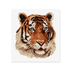 Tiger Portrait - Counted Cross Stitch Kit - 25cm x 25cm