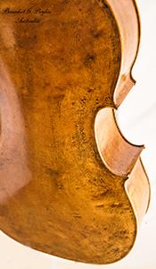 Cello19 angle
