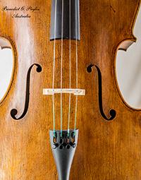 cello 19 top