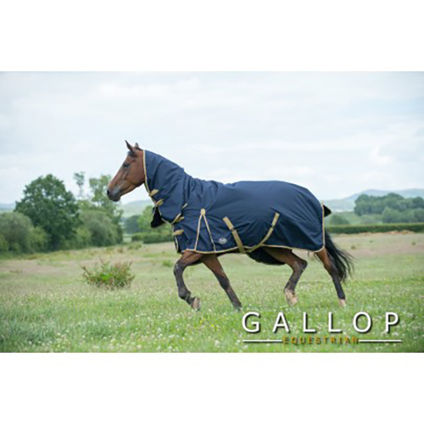 Gallop Trojan Lite Medium Weight 100g Fill Waterproof Horse Turnout Rug No Neck