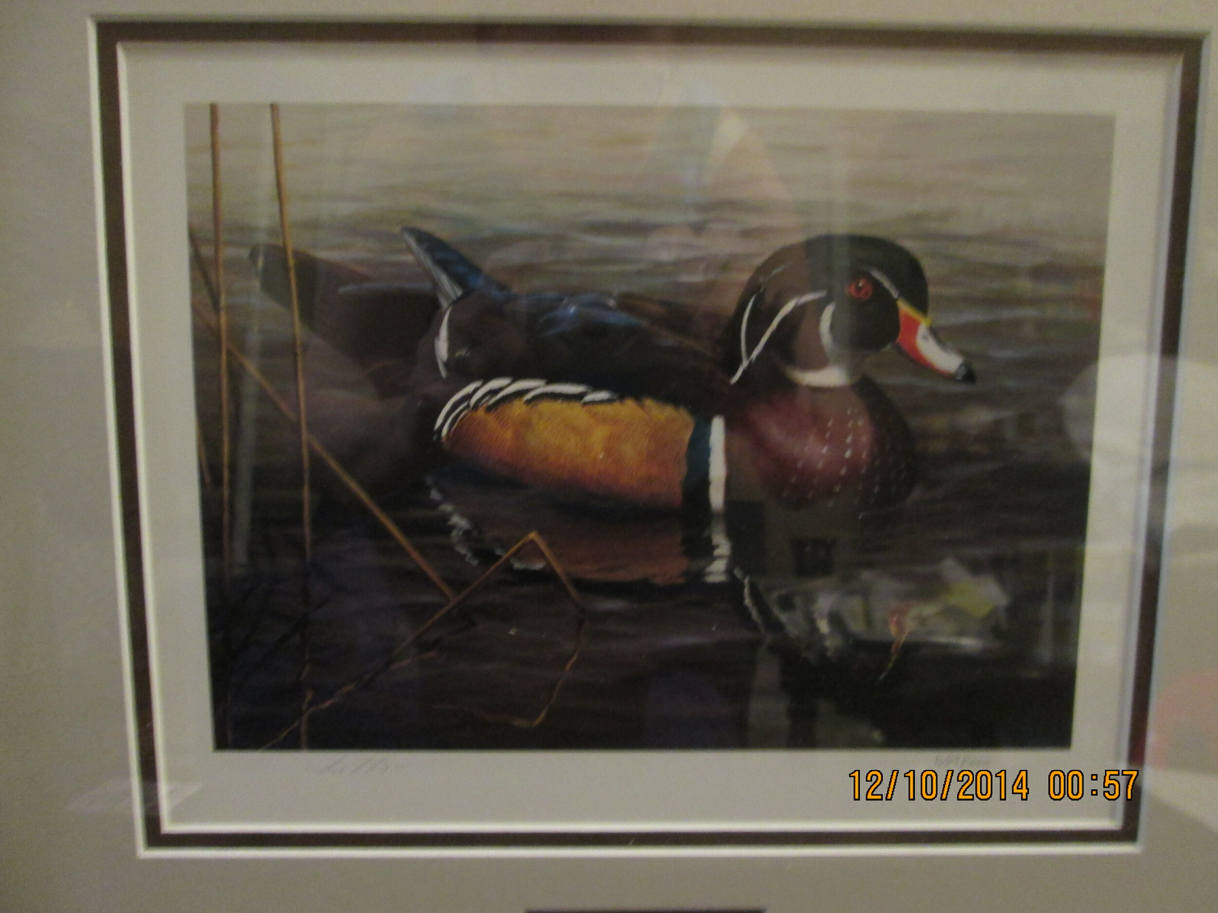 Ducks Unlimited print HEADS UP Jerry Newman 33x25.5 SIGNED NUMBERED Limited Ed